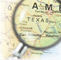 LLC Search Texas